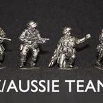NZ/Aussie Team D