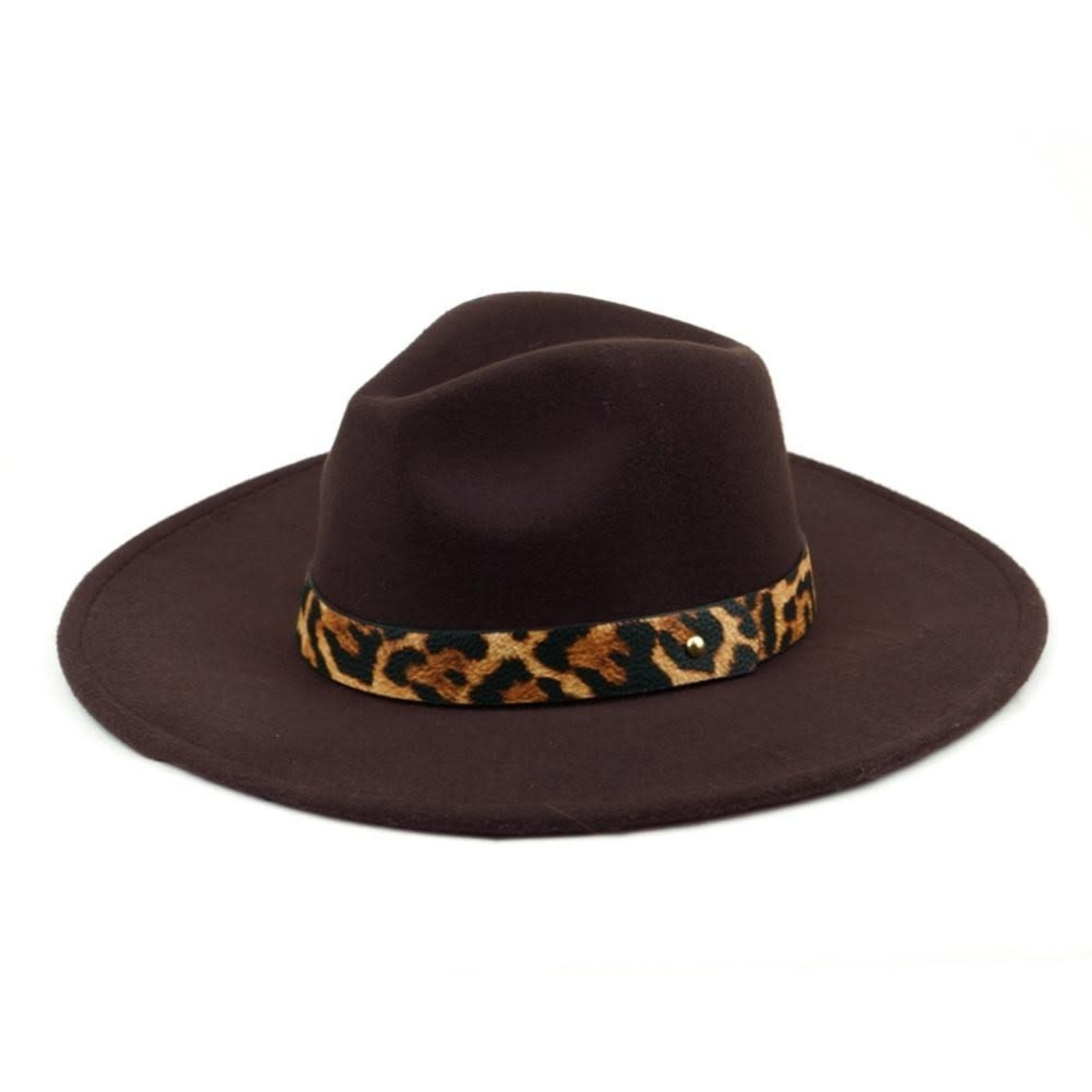 Wool Felt Panama Hat  Brown